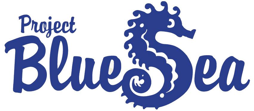 CleanUp 2018 Project Blue Sea e.V.